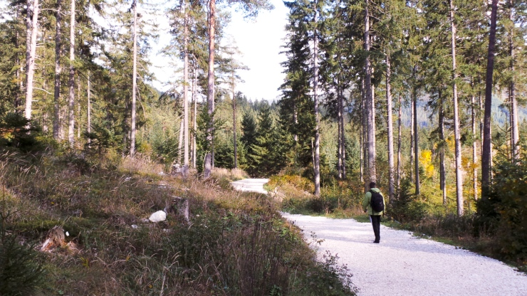 The walk to Grüner See
